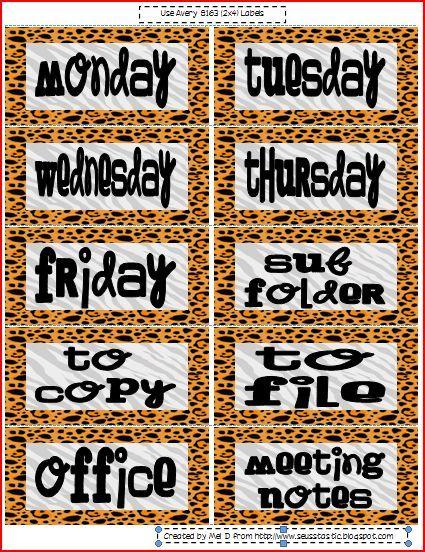 Jungle Themed classroom labels :)  love it