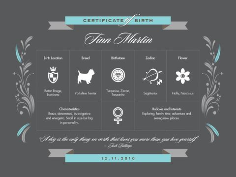 Stormy Monday - Custom Dog Birth Certificate Poster