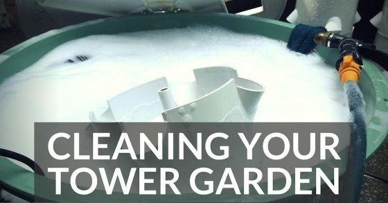 Cleaning Your Tower Garden