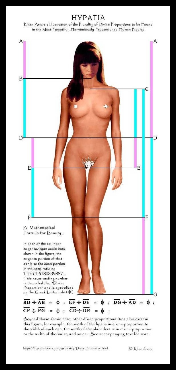 13 best proportion images on Pinterest | Drawing reference, Human ...