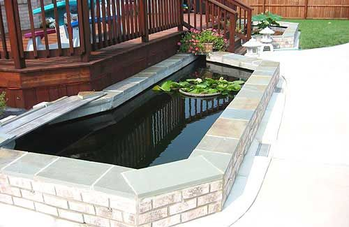 1000 images about koi pond ideas on pinterest koi ponds for Concrete koi pond design