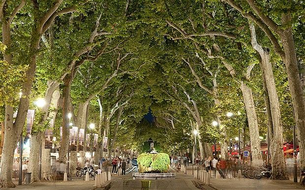 Aix-en-Provence (my study abroad home) has my heart forever. Pictured: The beautiful Cours Mirabeau - street of cafes and fountains.