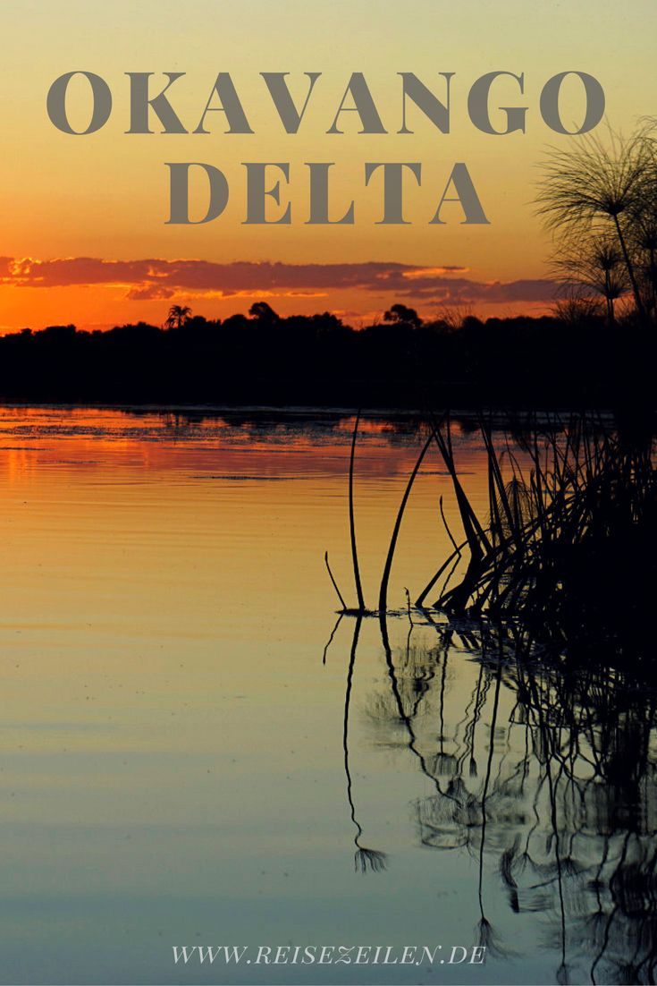 Reisebericht westliches Okavango Delta (Botswana) & Sambesi Region (Namibia)