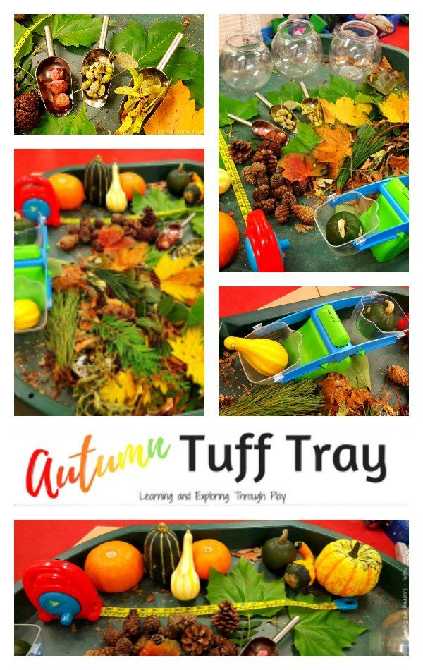Autumn Tuff Tray. Autumn Ideas for children. Learning and Exploring Through Play.