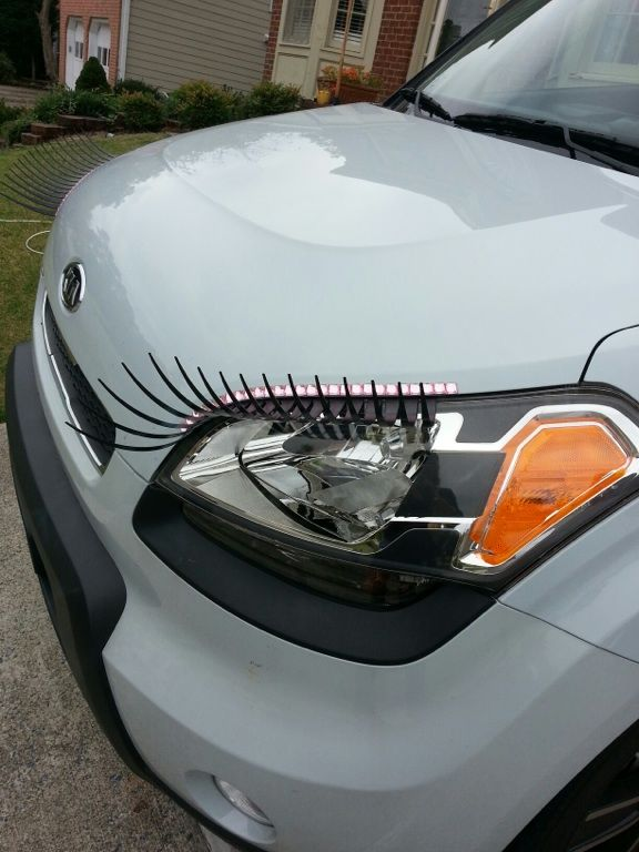 I want a set of these for Fiona! (my Kia Soul)