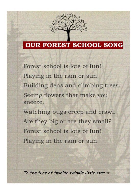 Our forest school song!