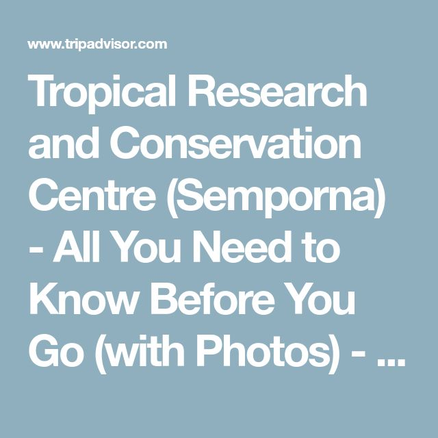 Tropical Research and Conservation Centre (Semporna) - All You Need to Know Before You Go (with Photos) - TripAdvisor