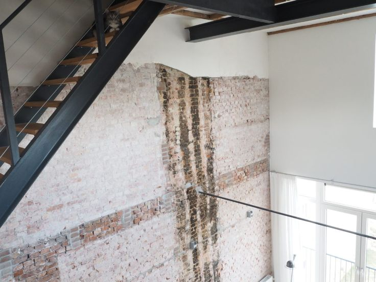 brickwall loft sneaky cat rotterdam