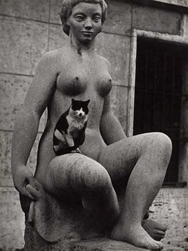 Sabine Weiss, Cat resting on Female Statue, Paris, 1955.