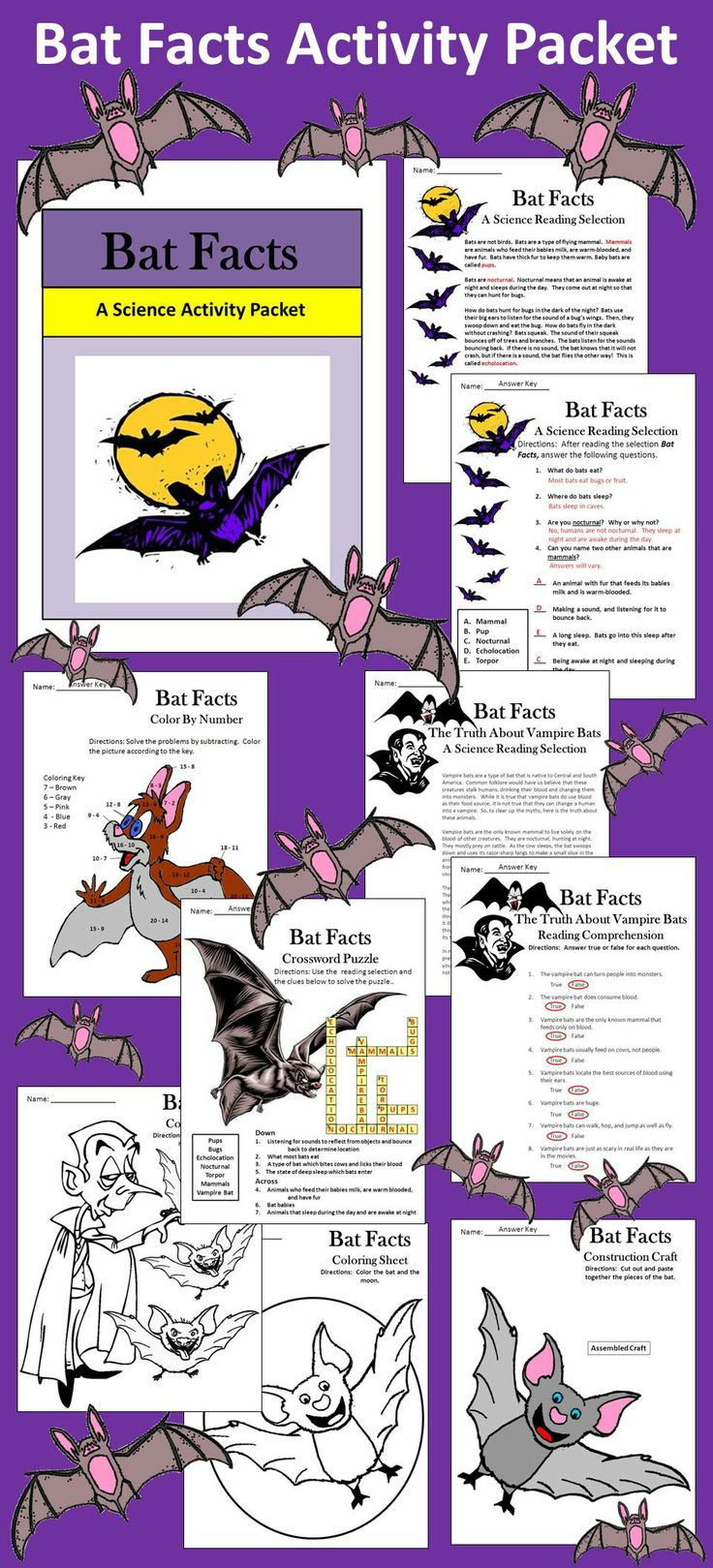 Bat Facts Activity Packet This is a colorful cross-curricular activity packet in which your students will learn all about bats. Contents include: * One reading selection on Bat Facts * One reading selection on The Truth about Vampire Bats * One reading comprehension quiz over Bat Facts * One true/false quiz over The Truth about Vampire Bats * One crossword puzzle over bat vocabulary * One bat math subtraction coloring sheet * One bat construction craft * Two coloring sheets * Answer keys