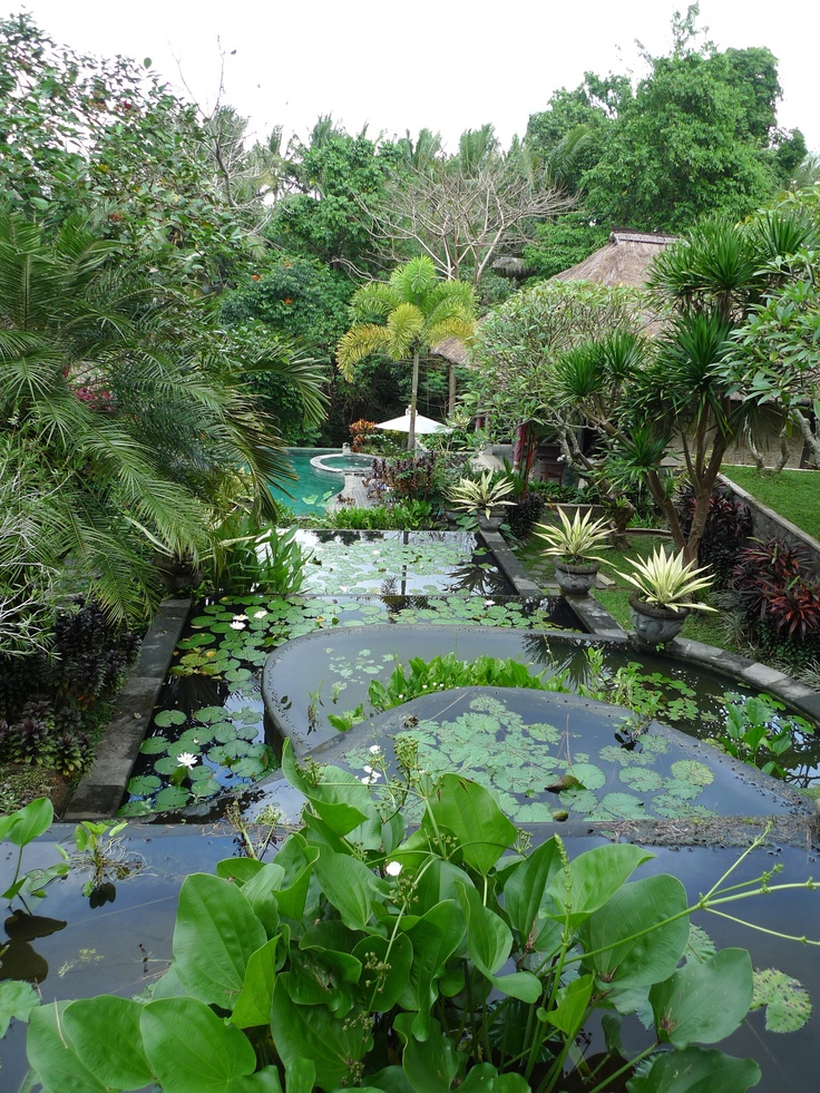 1000 images about resorts villas on pinterest bali for Gardens and villa