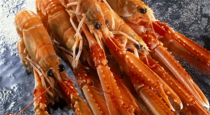 5 Langoustine Recipes with a Chef's Touch