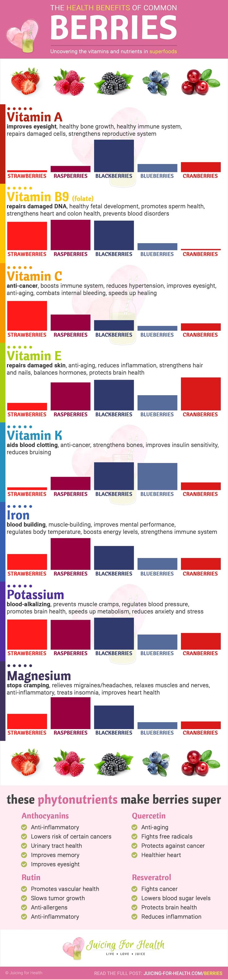 GET HEALTHY!!! The most #nutritious #berries - infographic showing vitamins, minerals and phytonutrients in #strawberry #raspberry #blackberry #blueberry #cranberry