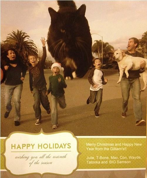 22 Funny Family Christmas Card Ideas - Neatorama. From Catzilla to Corny Family Portraits - some great funny family Christmas cards.