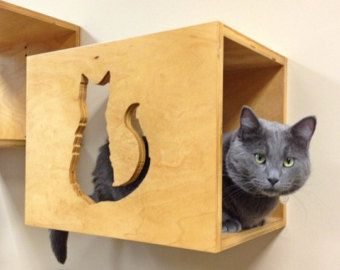 Set of Three Two Cat Stairs One Cat Bed Cat by PorteSueloGoods