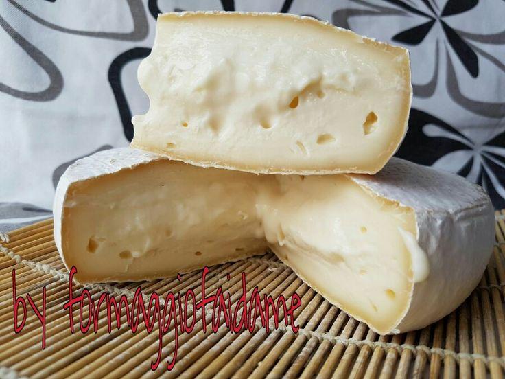 Brie....fai da me!!! Un meraviglioso batuffolo di neve dalla consistenza appagante e coccolosa! !! Prepariamo gli arnesi, si parte, per una nuova, rocambolesca magia.....