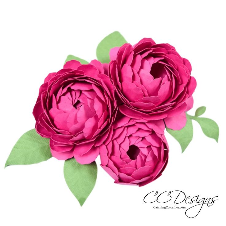 Peony Paper Flower Template - Catching Colorlfies