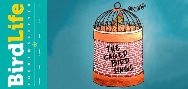 The Caged Bird Sings