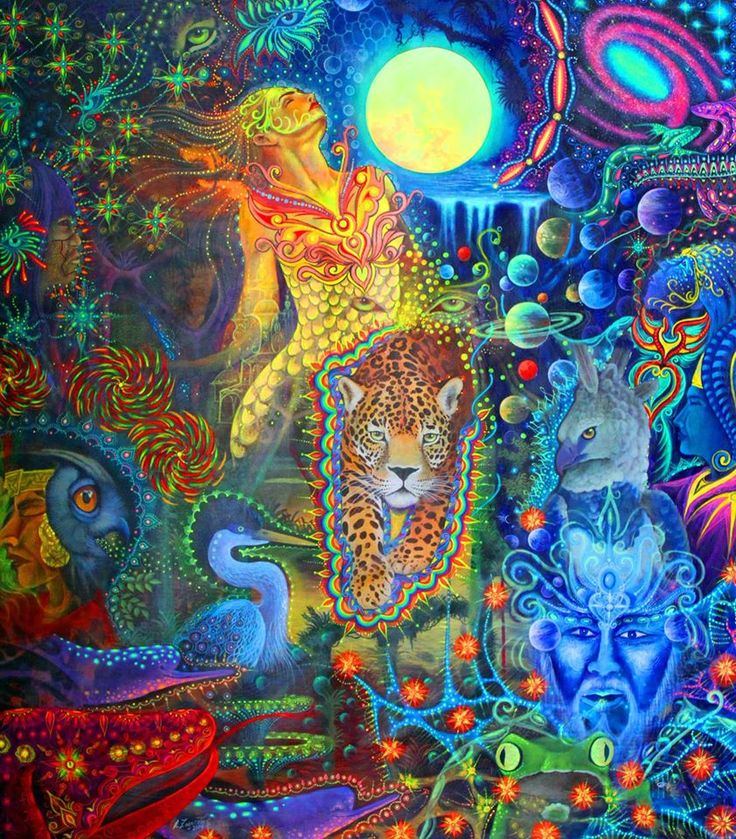 Moises llerena alfredo zagaceta artists of the amazon