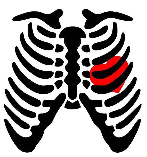 Skeleton Rib Cage Heart Svg Pdf Png Eps Dxf Welcome Etsy Skeleton Artwork Cricut Halloween Halloween Silhouettes