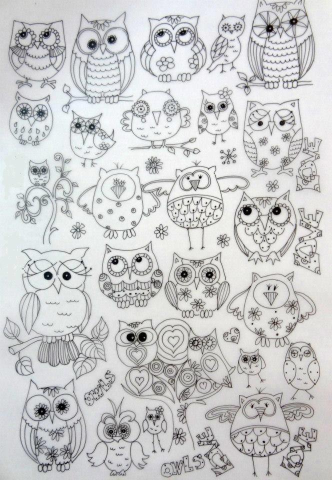owls doodled