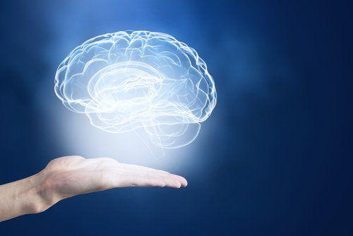 Per migliorare la memoria, possiamo ricorrere a regole mnemotecniche per relazionare i concetti che si vogliono ricordare con oggetti conosciuti.