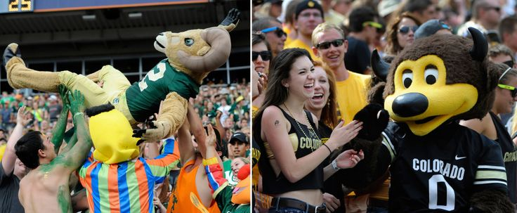 Colorado Buffaloes and Colorado State Rams see boost in football season ticket sales