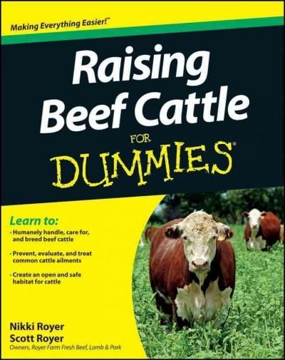 Beef cattle farming business plan