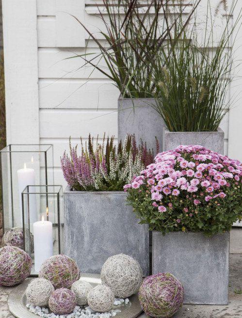 Kaunis syysasetelma: erika, krysanteemi, koristeheiniä, koristepalloja ja kynttilöitä - Beautiful fall planters: Erica, Chrysanthemum and Grasses