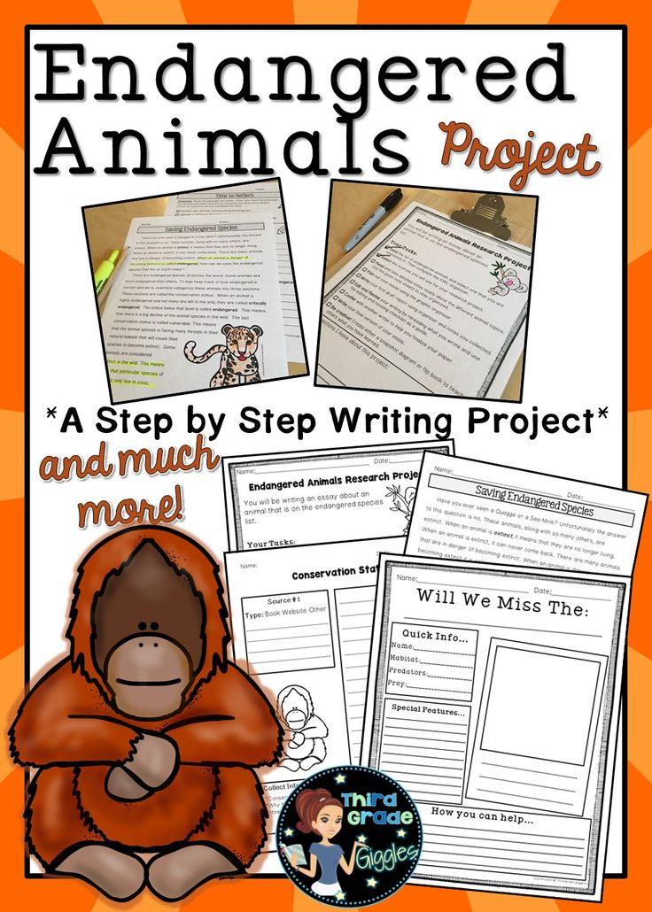 This endangered animal project is the perfect way to help you guide your students through the process of informational writing. Included are posters & a nonfiction article to give your students background knowledge on nature, endangered species, & extinction.  Allow your students to research an endangered animal of their choice, like sea turtles or big cats, with this resource. Add this product to your lesson plans to engage your writers Earth Day and everyday. Click to see everything included!