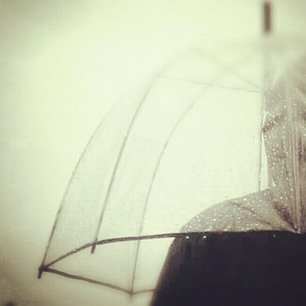 instagram..  jheidenphoto