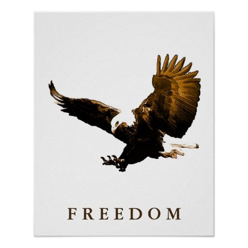 Freedom Eagle Motivational Brown Pop Art Poster