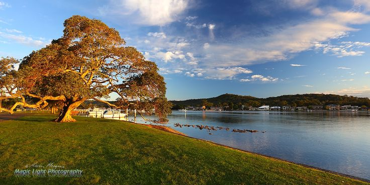 Davistown Waterfront APR 2016 panorama - The last rays of the setting sun light up the Davistown waterfront in a warm glow.