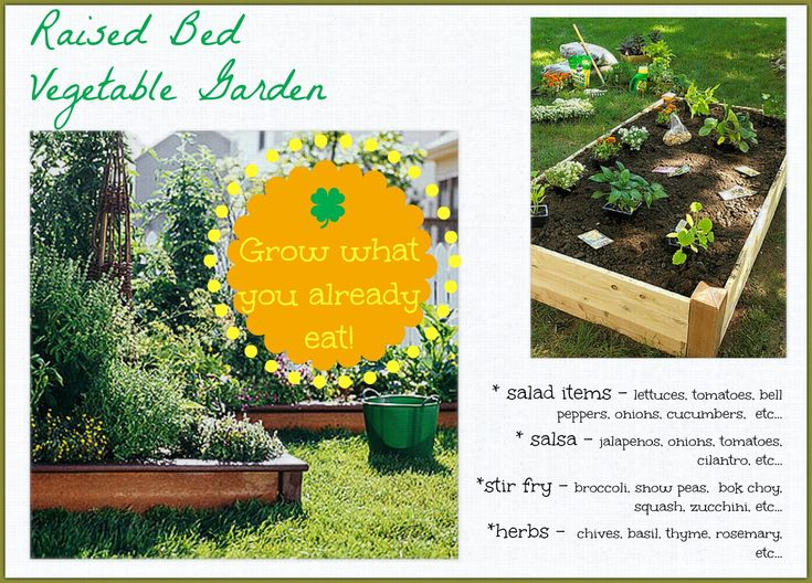 OB-Raised Bed Salad Garden  What to plant in a vegetable garden.