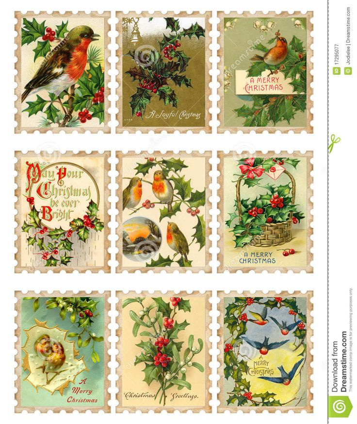 Set Of Nine Vintage Christmas Bird Holly Stamps - Download From Over 27 Million High Quality Stock Photos, Images, Vectors. Sign up for FREE today. Image: 17295077
