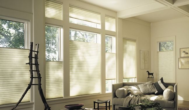 74 Best Great Blind Ideas Images On Pinterest Shades Window Dressings And Hunter Douglas Blinds