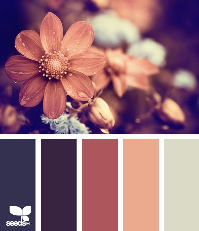 """flora tones [another scheme I LOVE:  muted, """"my"""" color of coral/peach and dark mauve; the lipstick colors I select]"""