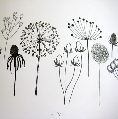 Best 25 Flower drawings ideas on Pinterest Pretty flower