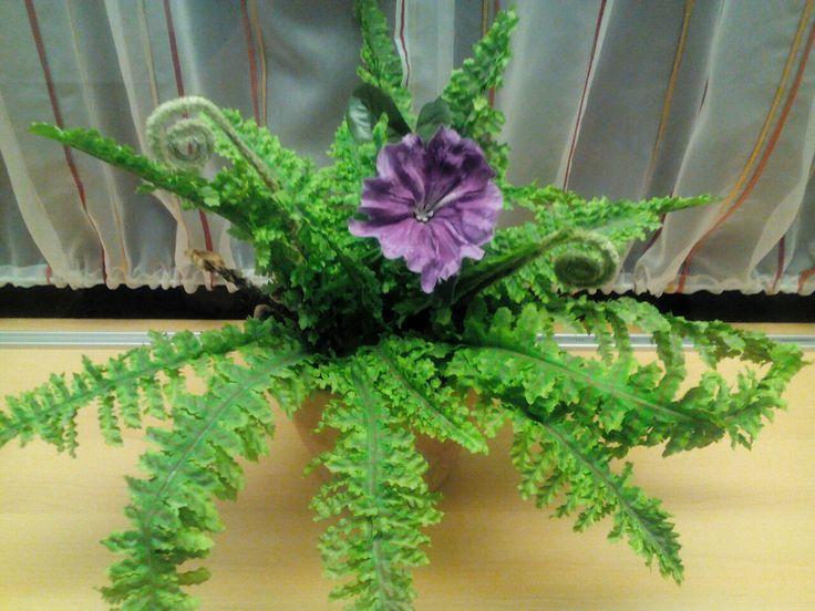 Saniainen on saanut kukkasen!