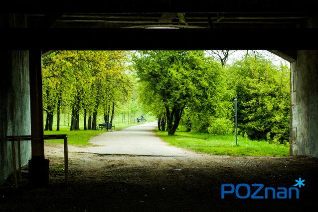 [fot. A. Zych]  #poznan