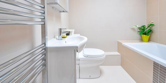 What Germs and Bacteria are Lurking in Your Bathroom.