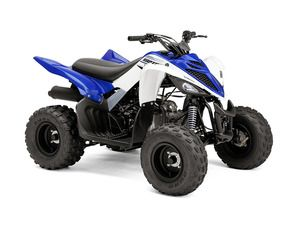 2016 Yamaha Raptor 90 Holland Michigan