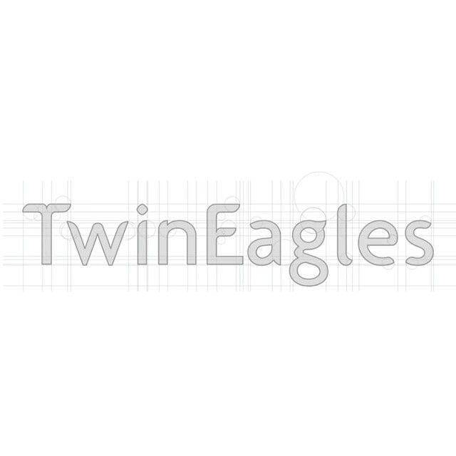 #TwinEagles Airlines #brandidentity designed by Drogu Design #corporateidentity #graphicdesign #branddesign #logo  #logodesign #typogtraphy #font #fontmodify #guideline #drogudesign