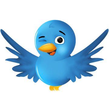 Twitter: 10 idées de tweets pour gagner des followers !