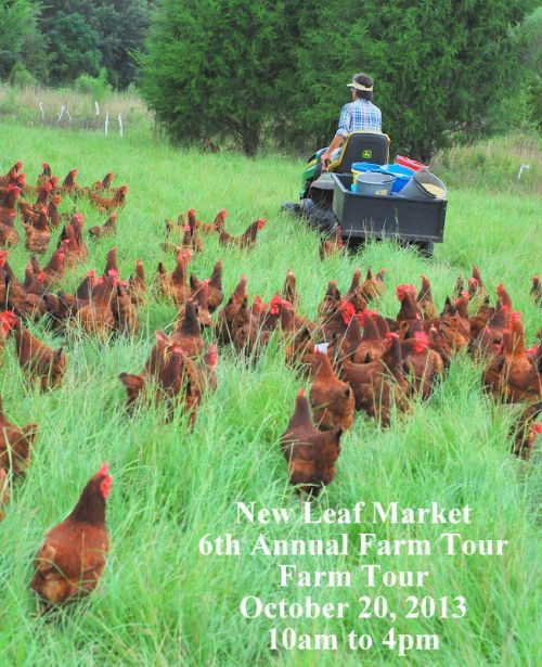 Bring the Family! New Leaf Market Presents 6th Annual Twin Oaks Farm Tour October 20, 2013