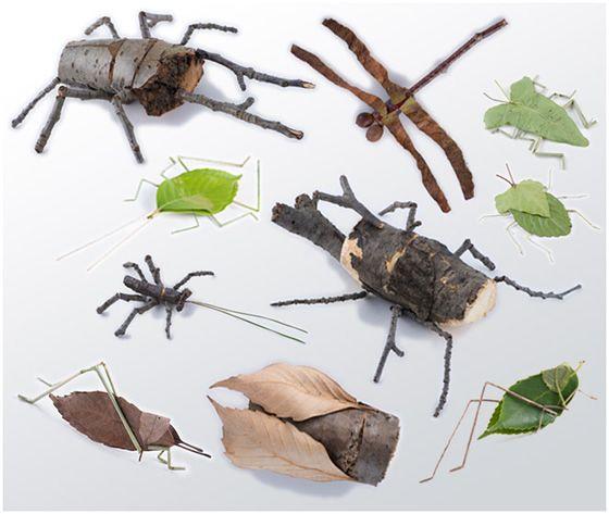 nature craft: bugs, bugs ...