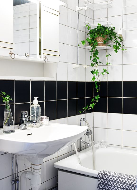 Plants In The Bathroom Is A Great Way To Purify The Air Keep Your Bathroom  Smelling Fresh Clean All Day Long. Part 88