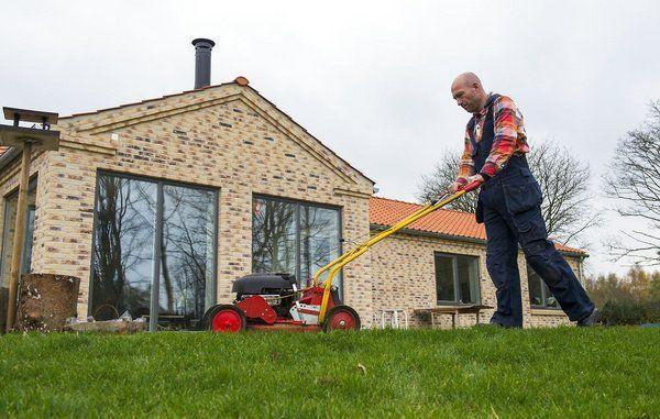 Skal du fjerne græs fra plænen, når du har slået det?