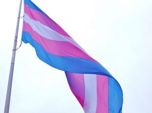 trans-flag-by-torbakhopper