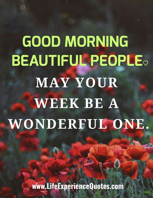 Good Morning Beautiful People May Your Week Be A Wonderful One